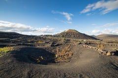 Άποψη του Λα Geria, η περιοχή αμπελοκαλλιέργειας Lanzarote, Ισπανία Στοκ Φωτογραφίες