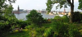 Άποψη του ορίζοντα της Στοκχόλμης από τον πράσινο πολύβλαστο κήπο Στοκ Εικόνες