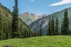 Άποψη του ορεινών τοπίου και του τοπίου στο εθνικό πάρκο της ΑΛΑ Archa, ένας δημοφιλής προορισμός πεζοπορίας κοντά σε Bishkek, Κι στοκ εικόνες με δικαίωμα ελεύθερης χρήσης