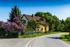 Άποψη του παραδοσιακού του χωριού σπιτιού με την πασχαλιά cesky τσεχική πόλης όψη δημοκρατιών krumlov μεσαιωνική παλαιά Στοκ φωτογραφία με δικαίωμα ελεύθερης χρήσης