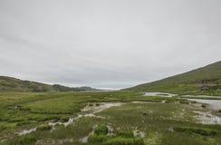 Άποψη του περάσματος της διαδρομής βοοειδών Στοκ Εικόνες
