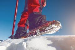 Άποψη του περπατήματος στο χιόνι με τα παπούτσια χιονιού και τις ακίδες παπουτσιών το χειμώνα Στοκ Εικόνες