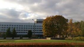 Άποψη του πράσινου τετραγώνου Στοκ εικόνες με δικαίωμα ελεύθερης χρήσης