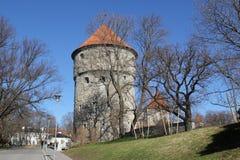 Άποψη του πύργου Kiek σε de Kök Στοκ φωτογραφία με δικαίωμα ελεύθερης χρήσης