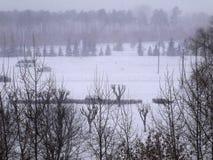 Άποψη του χιονισμένου πάρκου Στοκ φωτογραφία με δικαίωμα ελεύθερης χρήσης