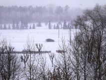 Άποψη του χιονισμένου πάρκου Στοκ Φωτογραφία