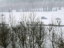 Άποψη του χιονισμένου πάρκου Στοκ Εικόνα