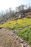Άποψη του Hill του Νεπάλ Poon Στοκ φωτογραφίες με δικαίωμα ελεύθερης χρήσης