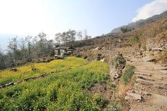 Άποψη του Hill του Νεπάλ Poon Στοκ εικόνες με δικαίωμα ελεύθερης χρήσης