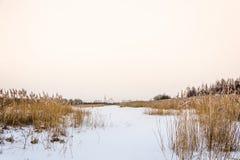 Άποψη του nikolo-Tikhonov μοναστηριού Luh με τον παγωμένο ποταμό Luh Στοκ Φωτογραφία