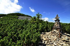 Άποψη των αιχμών βουνών στα γιγαντιαία βουνά Στοκ εικόνα με δικαίωμα ελεύθερης χρήσης