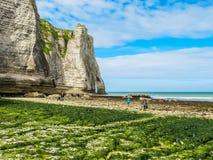 Άποψη των απότομων βράχων και της παραλίας σε μια χαμηλή παλίρροια, Στοκ Εικόνες