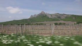 Άποψη των βουνών και των αμπελώνων από το παράθυρο ενός κινούμενου αυτοκινήτου απόθεμα βίντεο