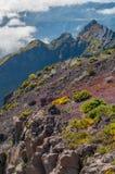 Άποψη των βουνών στη διαδρομή Pico Ruivo - Encumeada, νησί της Μαδέρας, Πορτογαλία, Ευρώπη Στοκ Φωτογραφίες
