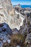 Άποψη των δολομιτών Brenta αιχμών βουνών στοκ φωτογραφία με δικαίωμα ελεύθερης χρήσης