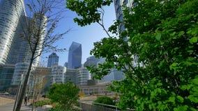 Άποψη των υψηλών κτηρίων γυαλιού μέσω των δέντρων και των Μπους απόθεμα βίντεο