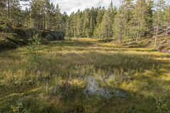 Άποψη φθινοπώρου πέρα από το μόνο Στοκ εικόνες με δικαίωμα ελεύθερης χρήσης