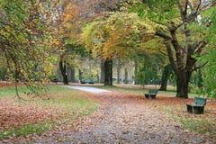 Άποψη φθινοπώρου σε ένα πάρκο Στοκ Εικόνες