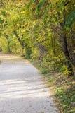 Άποψη φθινοπώρου του ίχνους στην όχθη ποταμού στοκ εικόνες