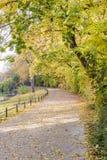 Άποψη φθινοπώρου του ίχνους στην όχθη ποταμού στοκ φωτογραφίες με δικαίωμα ελεύθερης χρήσης