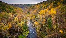 Άποψη φθινοπώρου του ποταμού πυρίτιδας από το φράγμα Prettyboy, σε Baltim Στοκ Εικόνες