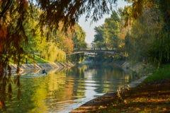 Άποψη φθινοπώρου του ποταμού Bega Στοκ φωτογραφία με δικαίωμα ελεύθερης χρήσης