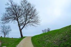 Άποψη φύσης στην Κοπεγχάγη Δανία Στοκ Εικόνα