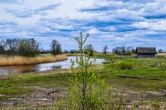 Άποψη όχθεων ποταμού την άνοιξη Στοκ Εικόνες