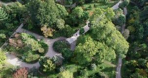 Άποψη, ύψος, τομείς, δέντρα, γεωργία, ορίζοντας, βλάστηση, πράσινη, ουρανός, σύννεφα, πέταγμα, φύση, χλωρίδα, Αμπχαζία φιλμ μικρού μήκους