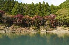 Άποψη Arashiyama στο Κιότο κατά τη διάρκεια του φθινοπώρου Στοκ Εικόνα