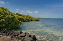 Άποψη Bonaire Στοκ Εικόνα