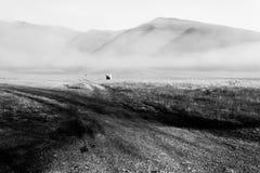 Άποψη Castelluccio Di Norcia υψίπεδο της Ουμβρίας, Ιταλία στο πρωί, με τα haybales και την υδρονέφωση Στοκ Φωτογραφία