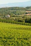 Άποψη classico Chianti στοκ φωτογραφίες με δικαίωμα ελεύθερης χρήσης