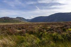 Άποψη Eigiau Cwm στοκ φωτογραφίες με δικαίωμα ελεύθερης χρήσης