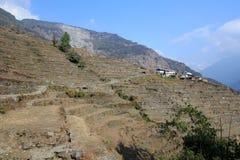 Άποψη Hill του Νεπάλ Poon Στοκ εικόνα με δικαίωμα ελεύθερης χρήσης