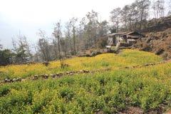 Άποψη Hill Poon στο Νεπάλ Στοκ εικόνες με δικαίωμα ελεύθερης χρήσης