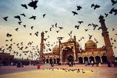 Άποψη Jama Masjid. Στοκ φωτογραφία με δικαίωμα ελεύθερης χρήσης