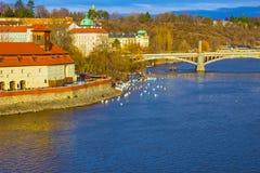Άποψη Mala Strana και του κάστρου της Πράγας και του καθεδρικού ναού του ST Vitus πέρα από τον ποταμό Vltava Στοκ Φωτογραφίες