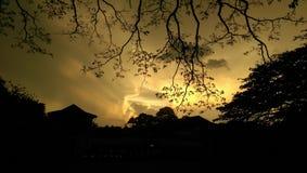 Άποψη Silhoutte του πανεπιστημίου peradeniya, Σρι Λάνκα Στοκ Φωτογραφία