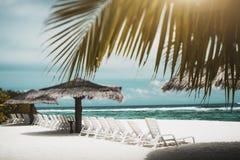 Άποψη Tiltshift της παραλίας θάλασσας με τα daybeds, sunshades και τους φοίνικες στοκ εικόνα