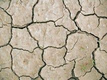 άργιλος ξηρός Στοκ Εικόνα