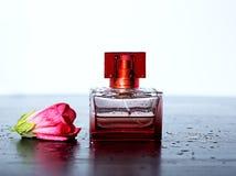 Άρωμα με ένα ρόδινο τρυφερό λουλούδι και τις πτώσεις του νερού Στοκ Εικόνες