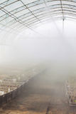 Άρδευση καλλιέργειας θερμοκηπίων Στοκ Εικόνες