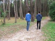 δάση περιπάτων Στοκ φωτογραφίες με δικαίωμα ελεύθερης χρήσης