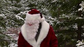 δάση santa Claus απόθεμα βίντεο