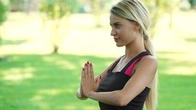 Άσκηση γιόγκας άσκησης γυναικών χαμόγελου στο θερινό πάρκο Ικανότητα ένας τρόπος ζωής απόθεμα βίντεο