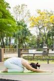 Άσκηση γιόγκας στο πάρκο στοκ εικόνα