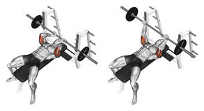 άσκηση Επέκταση barbell που βρίσκεται απεικόνιση αποθεμάτων