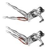 Άσκηση ικανότητας Ανυψωτικά πόδια στο πόδι θηλυκό απεικόνιση αποθεμάτων
