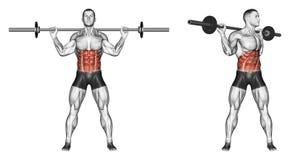 άσκηση Κορμός στροφών με το barbell διανυσματική απεικόνιση